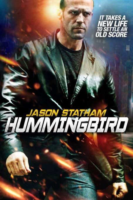 Hummingbird/